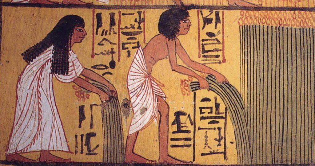 starożytni egipcjalnie ścinają trzcinę na żaluzje czasnarolety